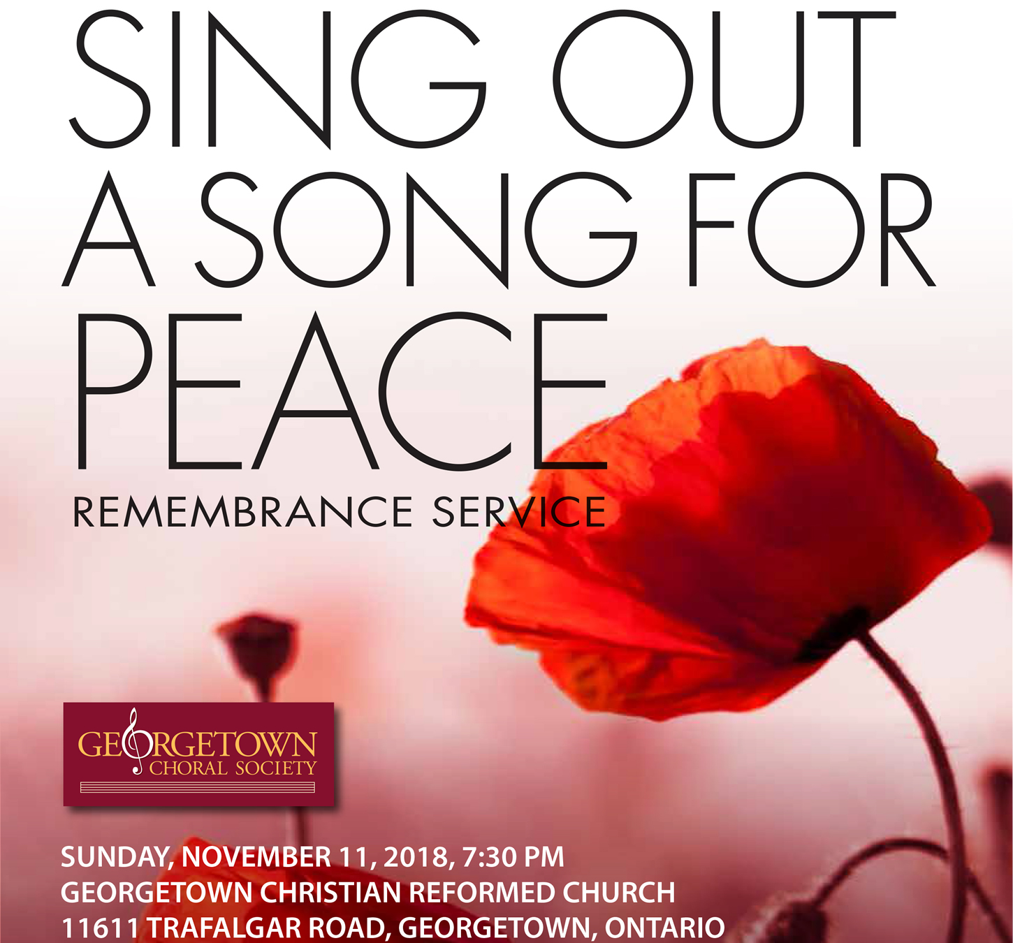 Sing Out A Song For Peace
